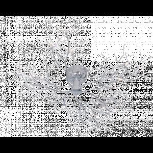 Steinhauer Plafondlamp halogeen 5241 chroom